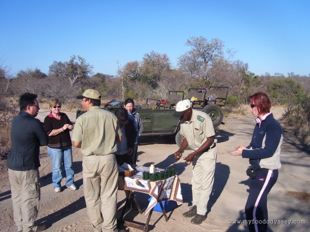 Coffee break bush style. Kruger National Park, South Africa, September 2007.