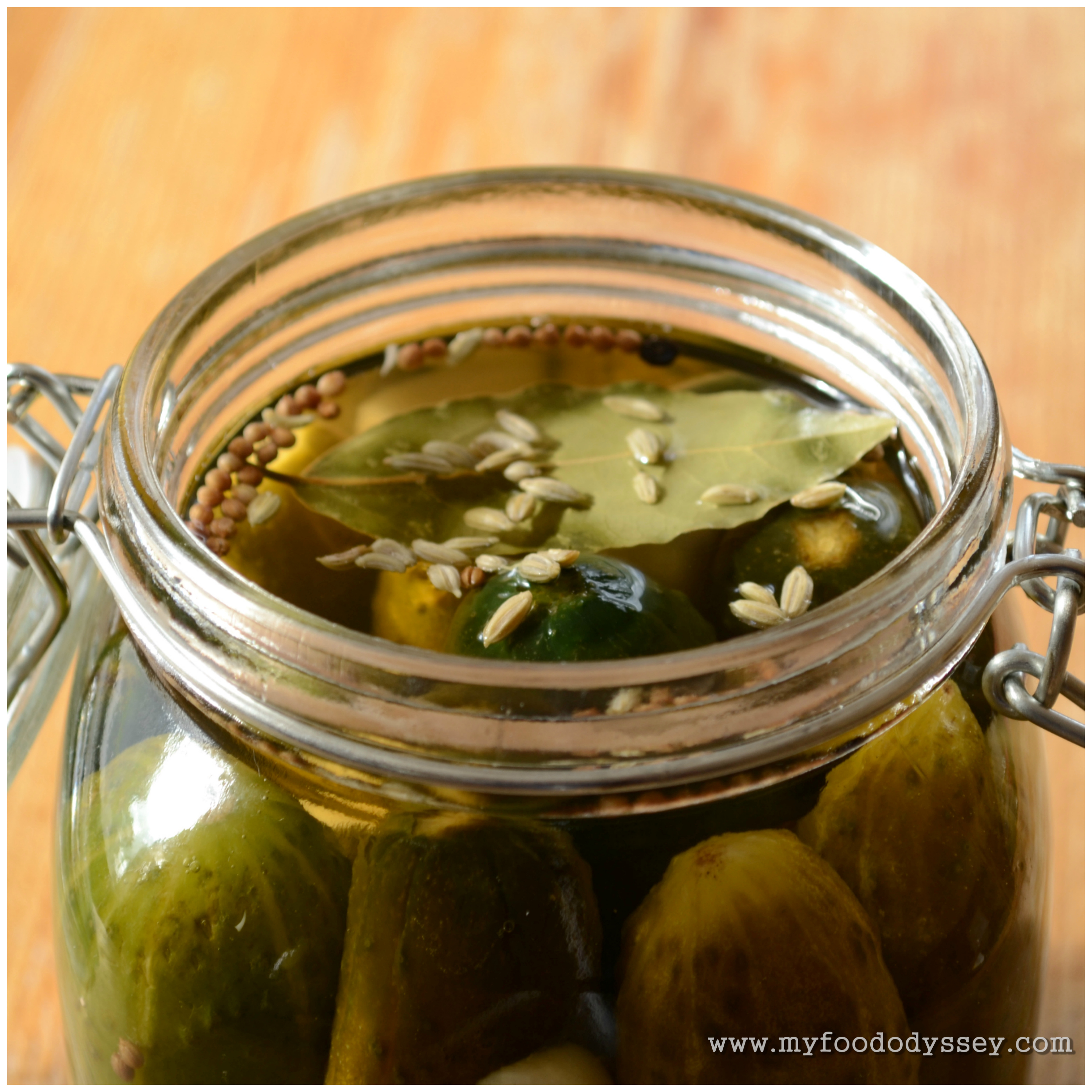 Quick Homemade Pickles [Recipe] | My Food Odyssey
