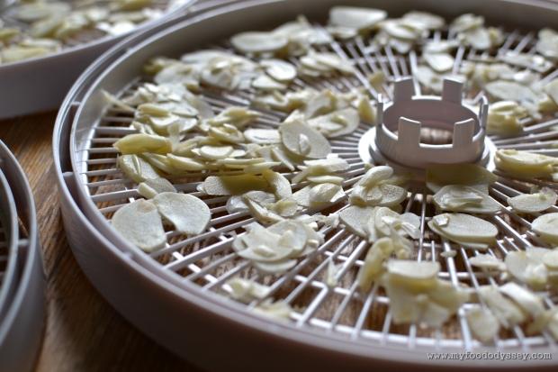 Homemade Garlic Powder | www.myfoododyssey.com