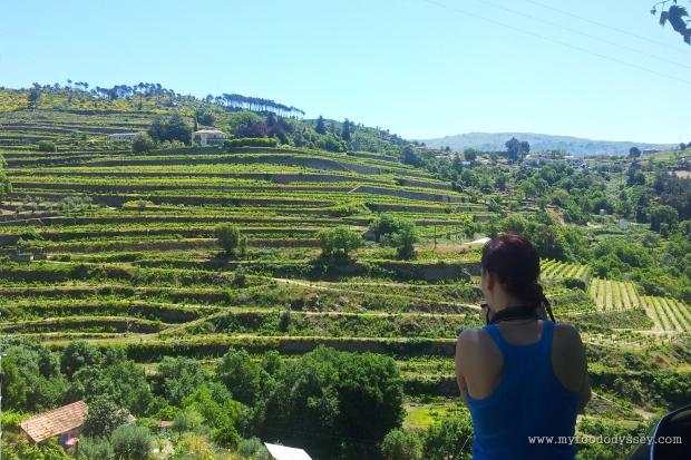 Duoro Valley, Porto | www.myfoododyssey.com