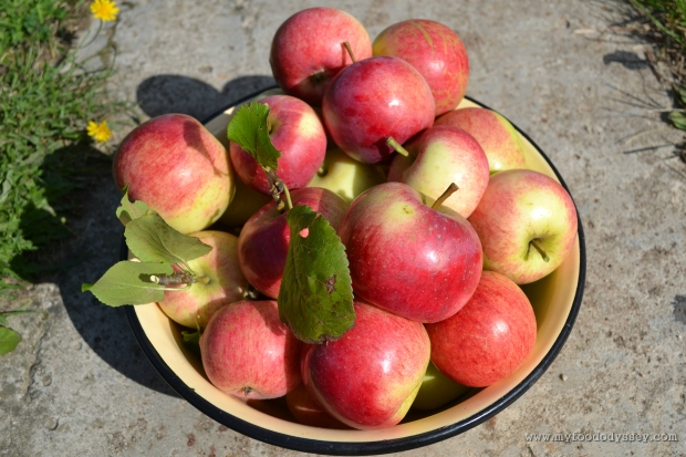 Apples | www.myfoododyssey.com