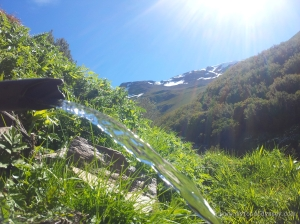 Mountain water spring | www.myfoododyssey.com