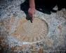Marine Fossil, El Torcal de Antequera (Spain) | www.myfoododyssey.com