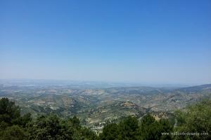 Olive Groves in Cazorla, Spain | www.myfoododyssey.com