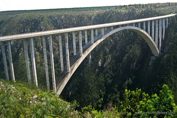 Bloukrans Bridge Bungy Jump | www.myfoododyssey.com