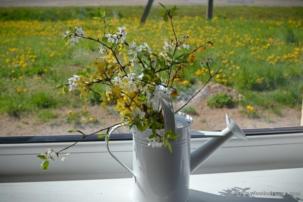 Fruit Blossoms | www.myfoododyssey.com