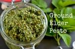 Ground Elder Pesto | www.myfoododyssey.com