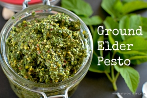 Ground Elder Pesto | www.myfoododyssey.com