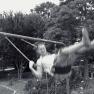 Man on swing   www.myfoododyssey.com