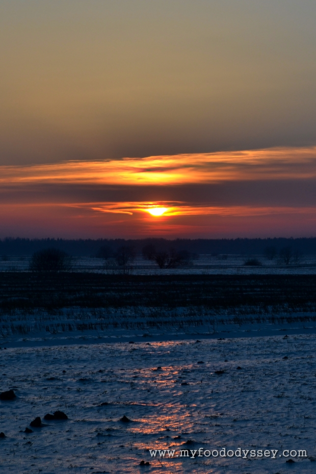 Winter Sunset, Lithuania | www.myfoododyssey.com