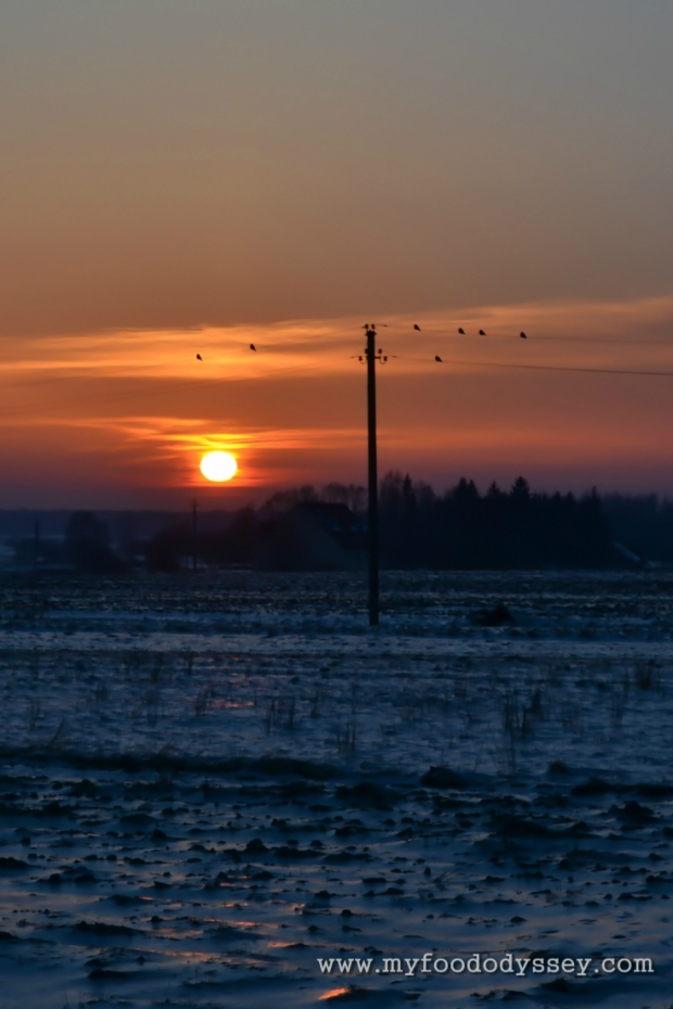 Winter Sunset, Lithuania   www.myfoododyssey.com