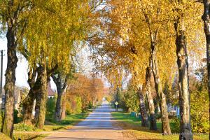 Autumn Village | www.myfoododyssey.com