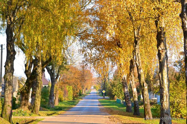 Autumn Village   www.myfoododyssey.com