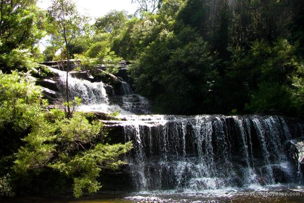 Blue Mountains, Australia | www.myfoododyssey.com