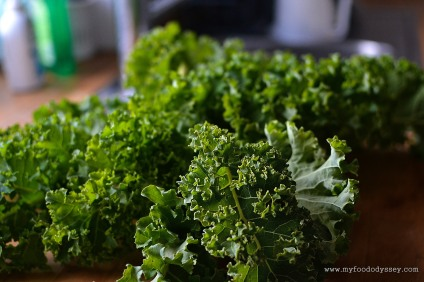 Kale Leaves | www.myfoododyssey.com