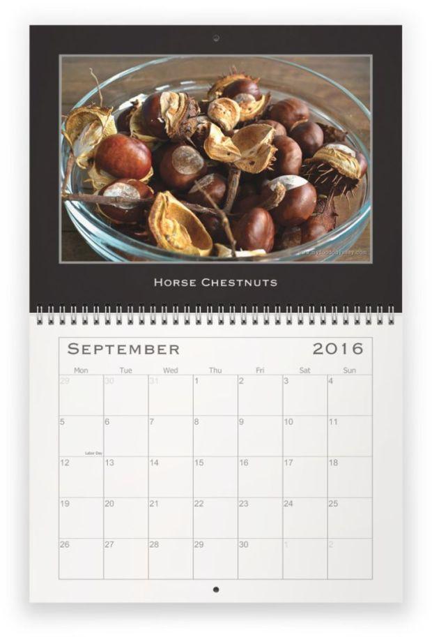 Calendar 2016 | www.myfoododyssey.com