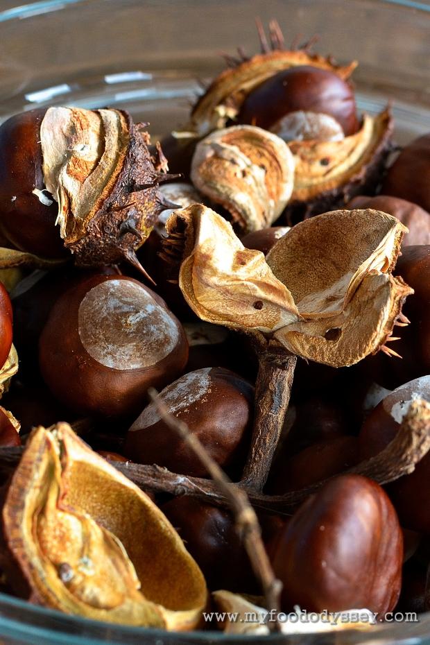 Autumn Chestnut Bowl | www.myfoododyssey.com