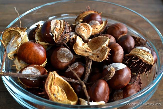 Autumn Chestnut Bowl   www.myfoododyssey.com