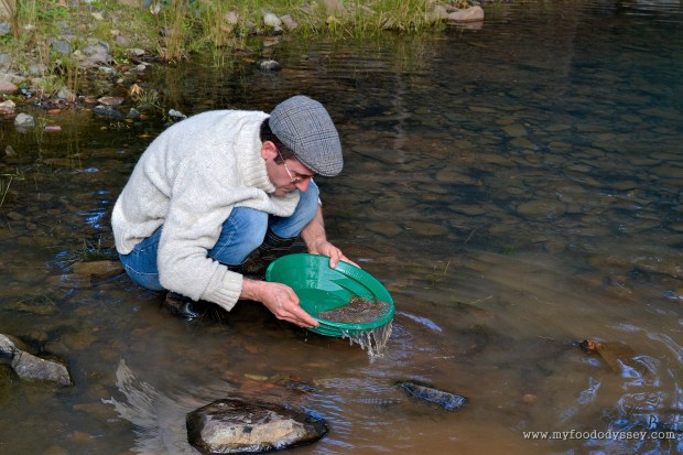 Panning for gold at Chesleigh Homestead in Sofala, Australia | www.myfoododyssey.com