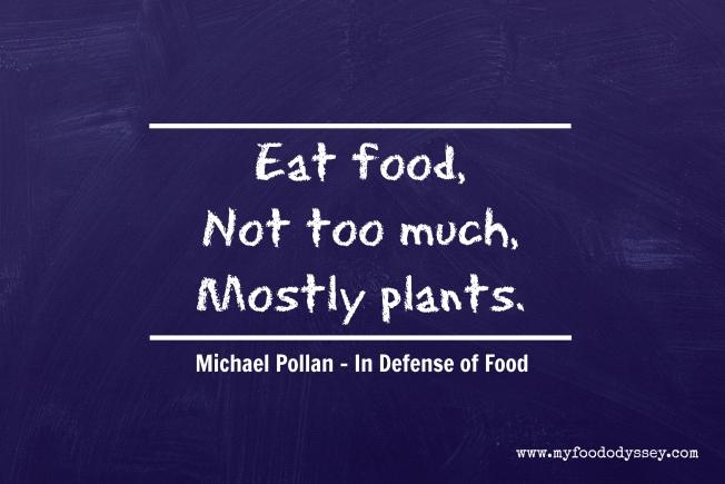 Michael Pollan - In Defense of Food   www.myfoododyssey.com