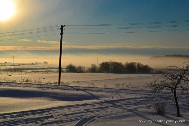 Winter Mist Lithuania DSC_0013
