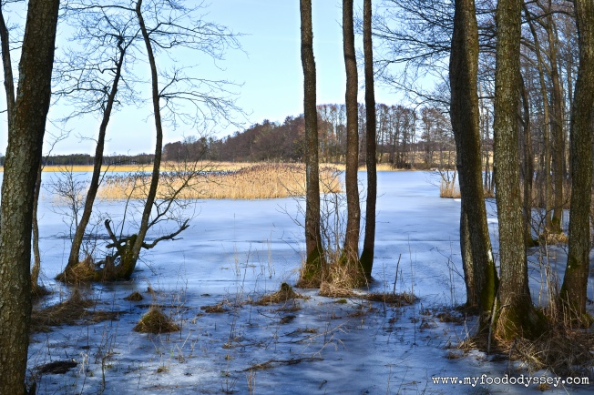 Winter Lake, Lithuania DSC_0328-1