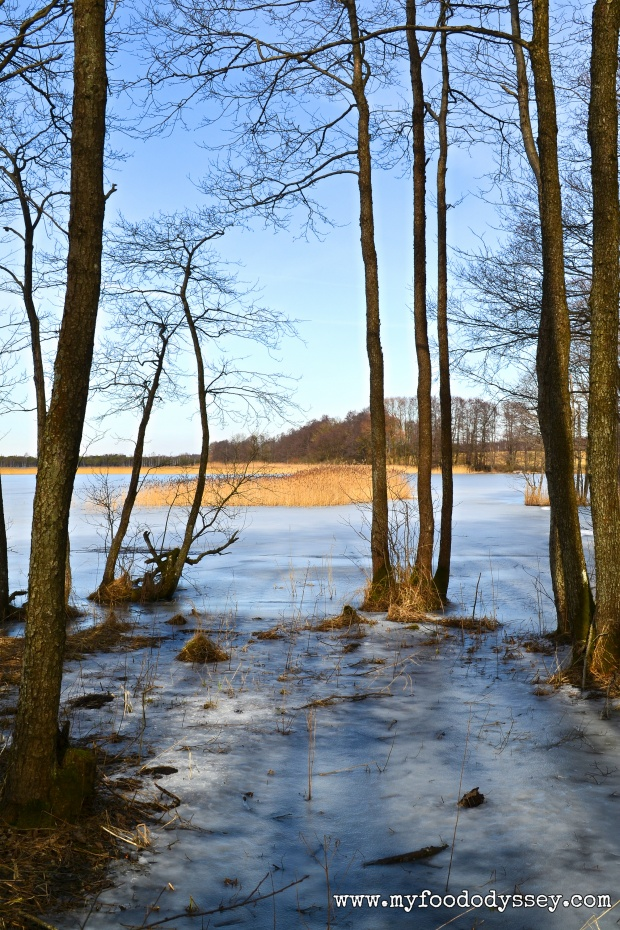 Winter Lake, Lithuania | www.myfoododyssey.com