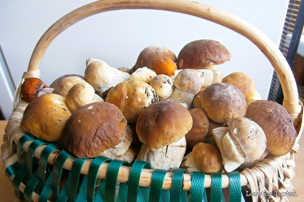 Basket of Cep (Porcini) Mushrooms | www.myfoododyssey.com