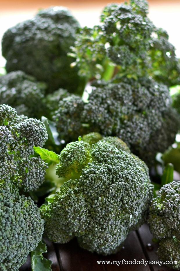 Fresh Broccoli | www.myfoododyssey.com