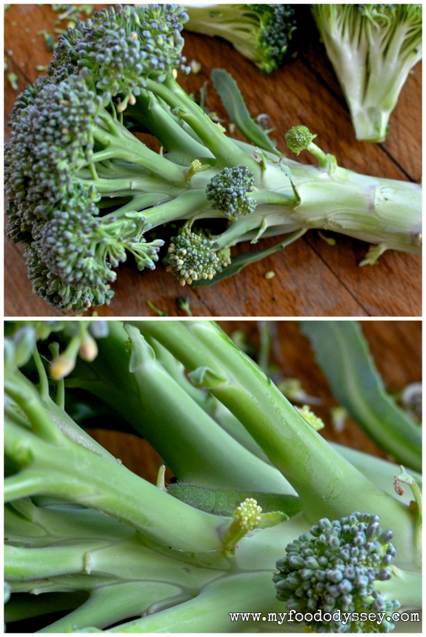 Camouflaged Broccoli Caterpillar   www.myfoododyssey.com