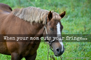 When your mom cuts your fringe... | www.myfoododyssey.com