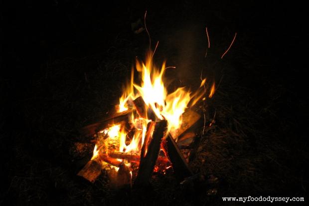 Camp Fire | www.myfoododyssey.com