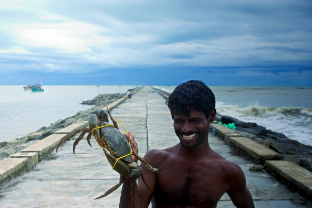Fisherman with Fresh Catch, Kerala (India) | www.myfoododyssey.com via www.keralatourism.org
