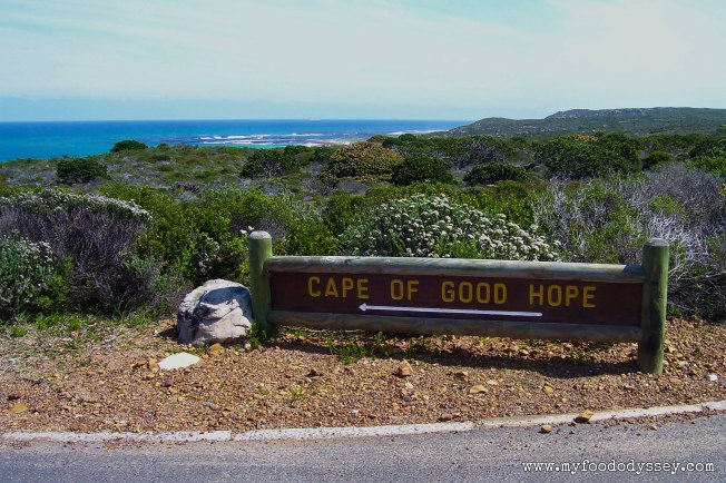 Cape of Good Hope, South Africa | www.myfoododyssey.com
